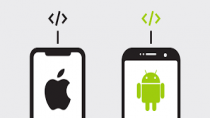 Android/IOS Development